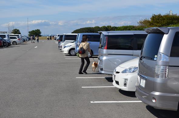 堺ドッグラン4・駐車場.JPG