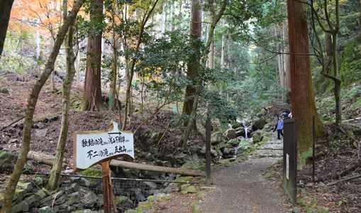 岩瀧寺17・渓谷沿い.jpg