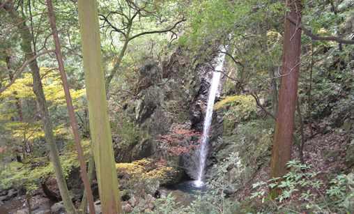 岩瀧寺21・石段の途中から見る滝.jpg