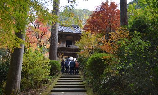 岩瀧寺4・山門への参道.jpg