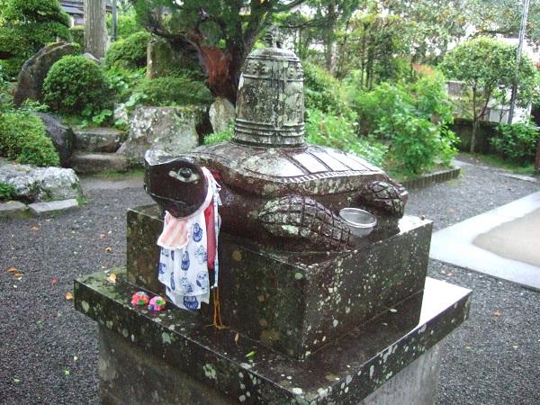 延光寺14・赤亀.jpg