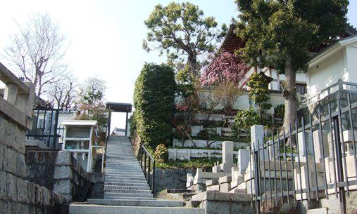 梅林寺10・墓所から本堂望む.jpg