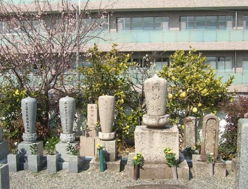 梅林寺8・開山塔と梅.jpg