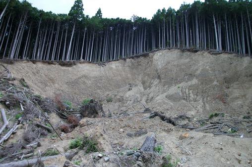 熊野219.jpg