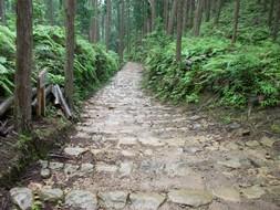 熊野58・石畳.jpg