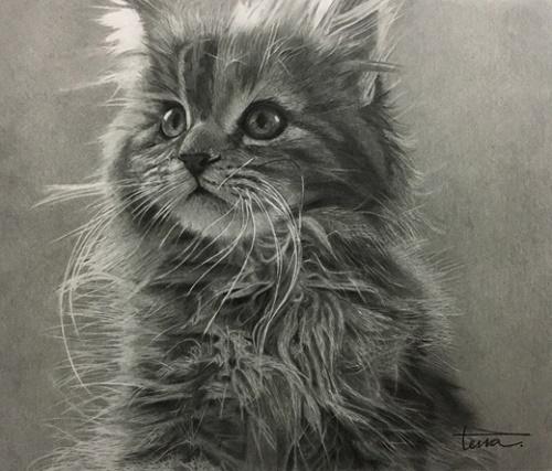 猫1・野口.jpg