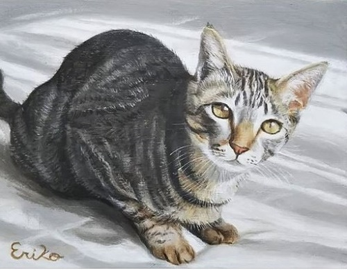猫7・児玉.jpg