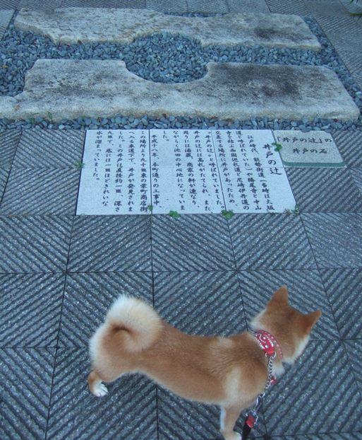 能勢街道60・井戸の辻.jpg